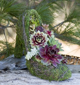The Succulent High Heel Pump