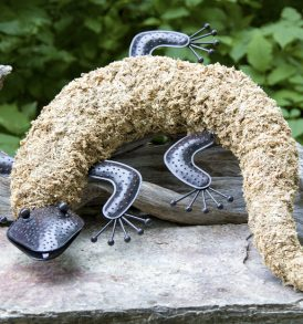Topiary Gecko Kit